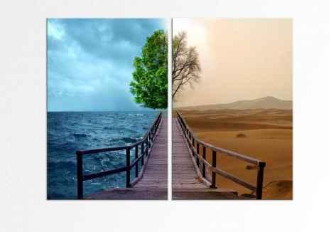 2 anotimpuri in contrast