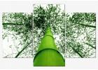 Set - Frunzis de Bambusi